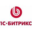 logo-bitriks.png